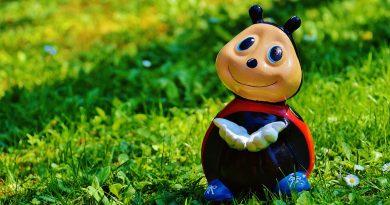 10 rzeczy które decydują, czy jesteśmy w życiu szczęśliwi